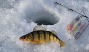 Bank Club Ice Fishing Tournament @ Gile Flowage Park | Montreal | Wisconsin | United States